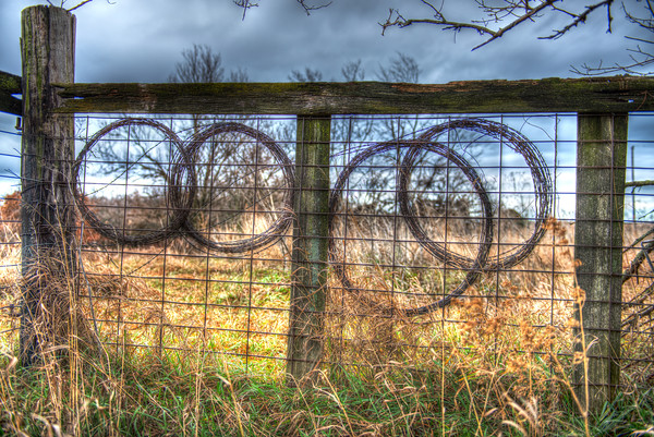 Barbed Wire Circles